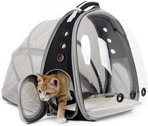 Transportador para Gatos