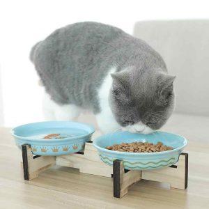 Platos para Gatos