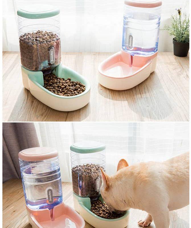 Dispensador de Comida para Gatos