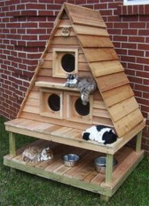 Casetas para Gatos Exterior