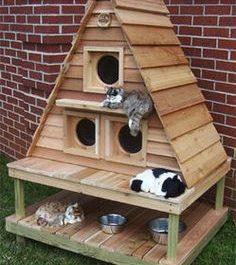 Caseta para Gatos Exterior