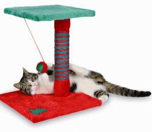 cosas para gatos 2
