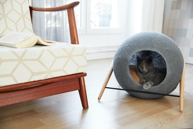 Cosas para gatos