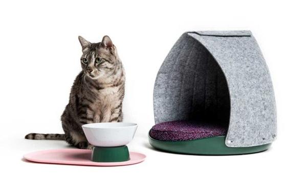 mejores accesorios de gatos