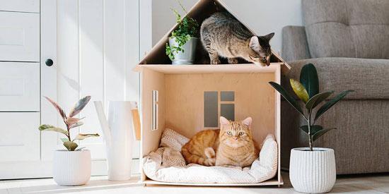 casas para gatos de madera