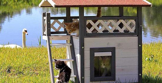 comprar casas para gatos de madera